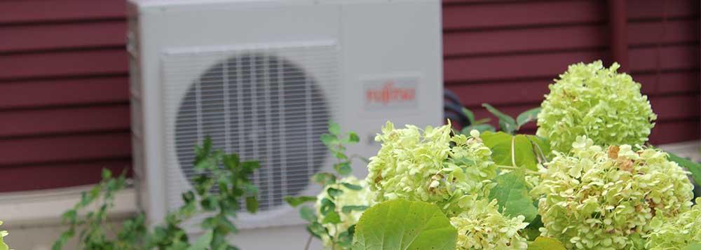 Fujitsu & Flowers