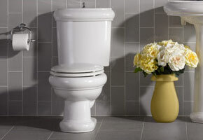 Toilet installations and repair