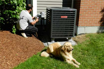 HVAC Technician With Dog